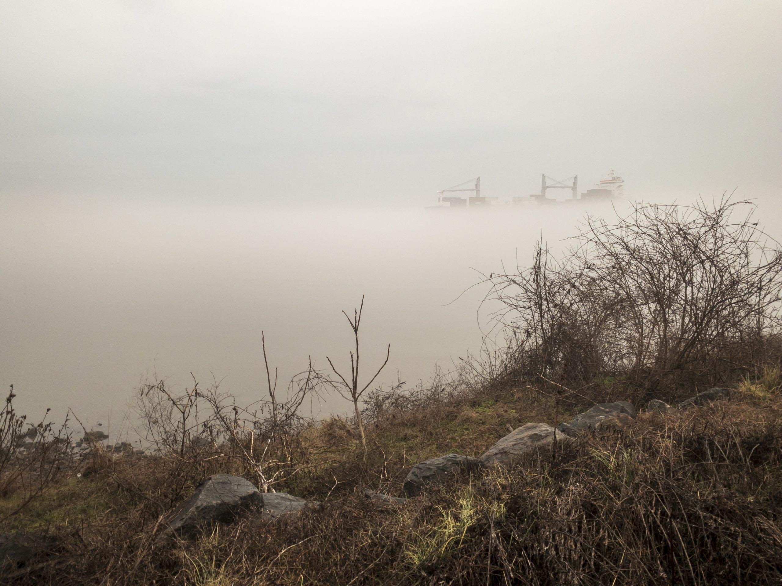 FoxPointPark-fog-5